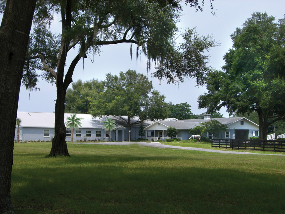 Ferguson & Associates Equine Hospital is located on eleven beautifully-wooded acres in the northwest area of Ocala